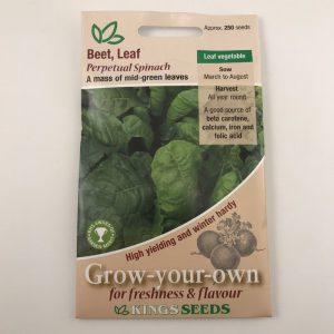Beet Leaf Perpetual Spinach