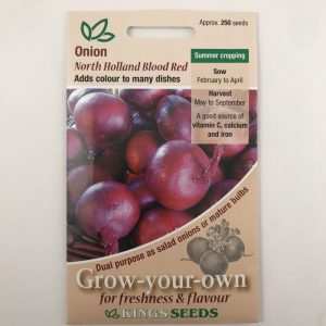Onion North Holland Blood Red