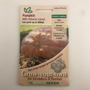 Pumpkin Dills Atlantic Giant