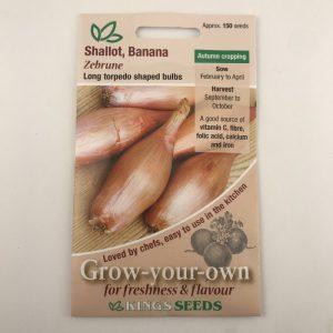 Shallot Zebrune (Banana)
